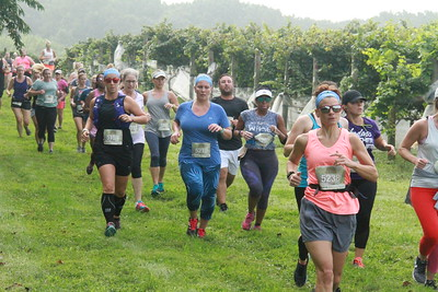 Run the Vineyards - Autumn Trail 8K (Sunday)