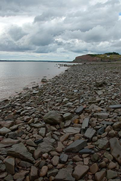 Fossilized rocks near Joggins Fossil Cliffs in Nova Scotia, Canada