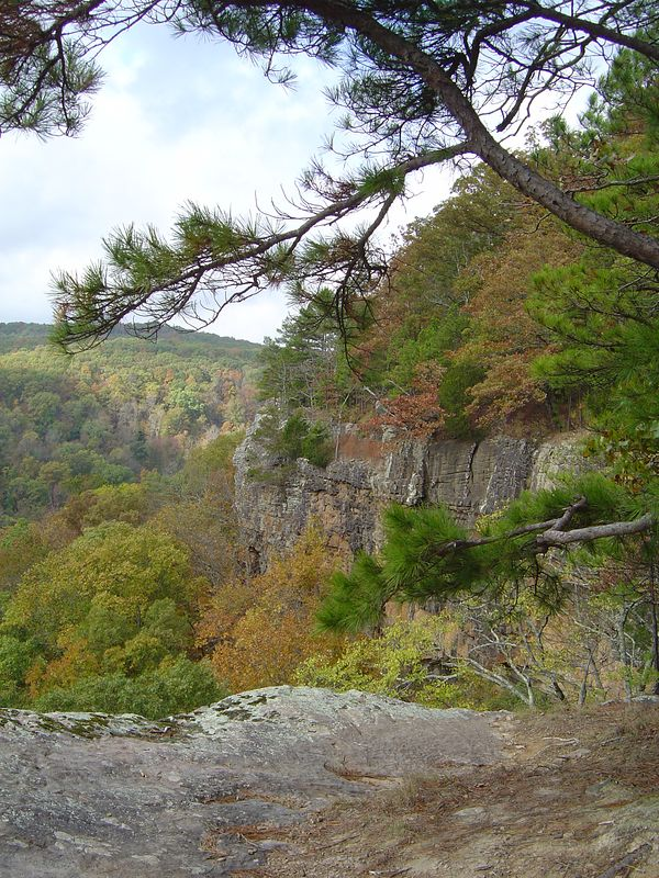 View from Hawksbill Crag (A.K.A. Whitaker Point)  Buffalo National River.  Photo by Kate.