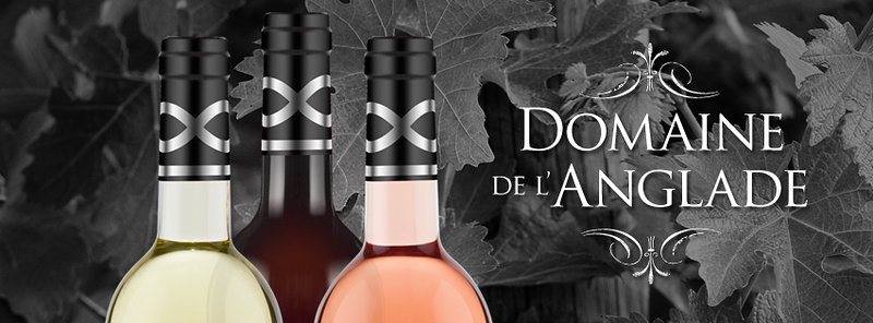 Domaine-FB-Header-3.png
