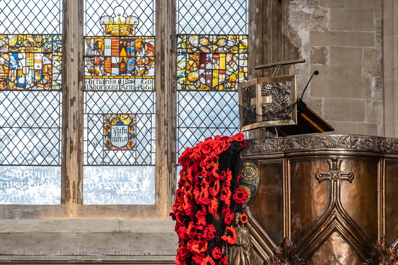 Cathedral & Ripon poppies-6.jpg