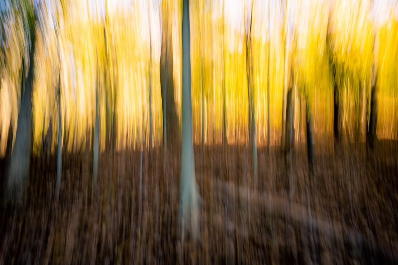 blurrr-1.jpg
