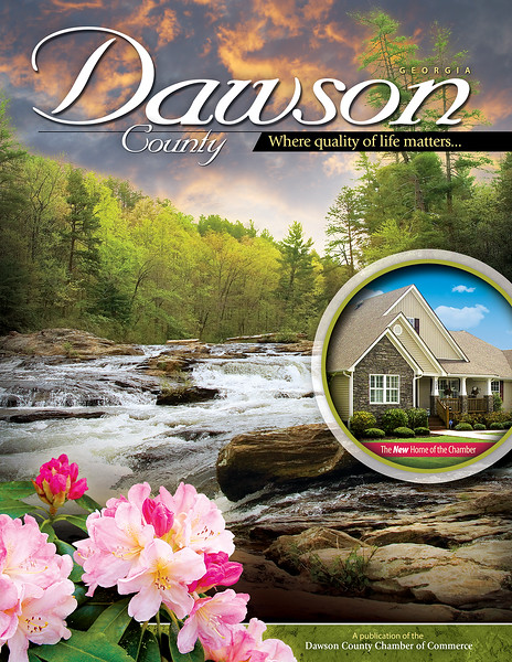 Dawson County NCG 2010 Cover (5).jpg