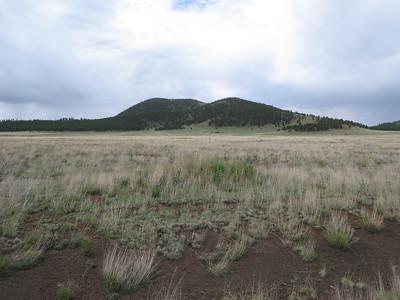 Saddle Mtn - Jul. 8, 2011