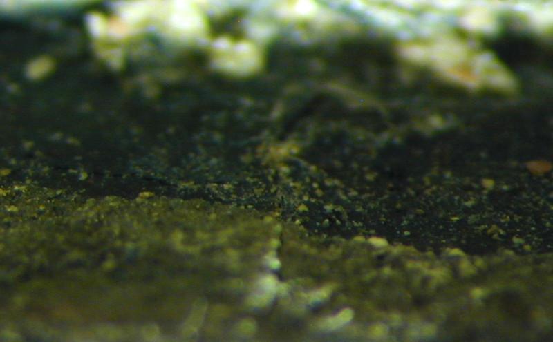 Zwischenzustand: Hegner Altar, Urban, Makroaufnahme der Schichtenabfolge am Gewandinnenseite. Unterste farbige Schicht ist ein Dunkelblau, darauf folgen 3 Grüne Schichten unterschiedlicher Natur. Durch die erste grüne Schicht auf dem Blau läuft das selbe Krakelee AAF_0029_01-01-1999