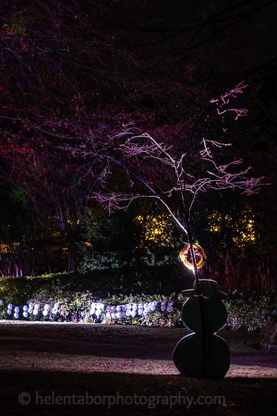 Illuminated Winter Wonderland by night-15.jpg