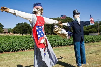 Grapevine TX, Nash Farm 07-06-08