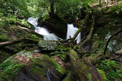 Dover Creek Fini