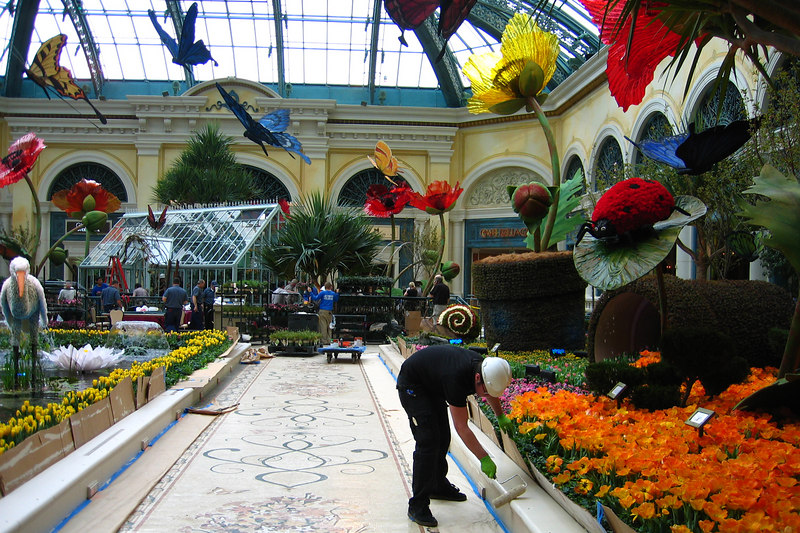 Staff was preparing the conservatory at the Bellagio.