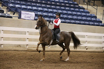 61. Academy Equitation 11-17 WT – Advanced