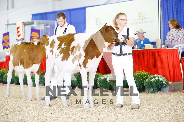 2016 Red & White Show