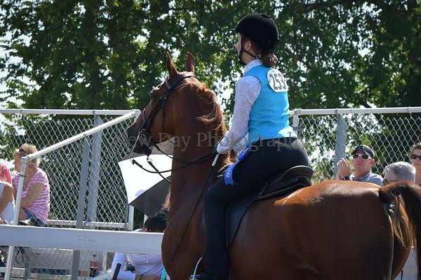 31D. Academy Horsemanship WTC 17 & Under