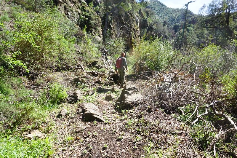20160218094-Gabrielino Trail Scouting.JPG