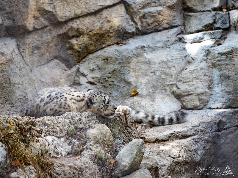 Santa Barbara Zoo 10-13-2018-033.jpg