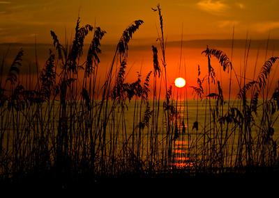Sunrise/Sunset - July 20, 2020