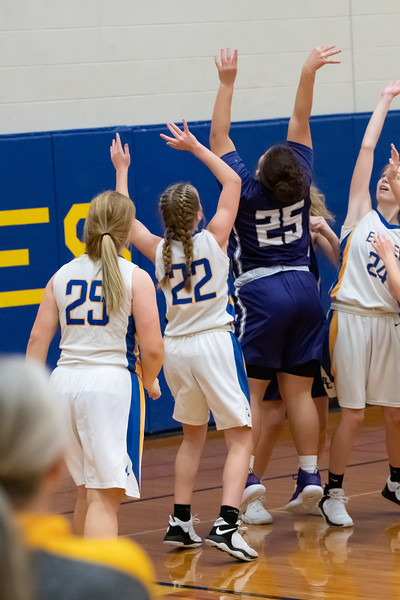 12-28-2018 Panthers v Brown County-0748.jpg