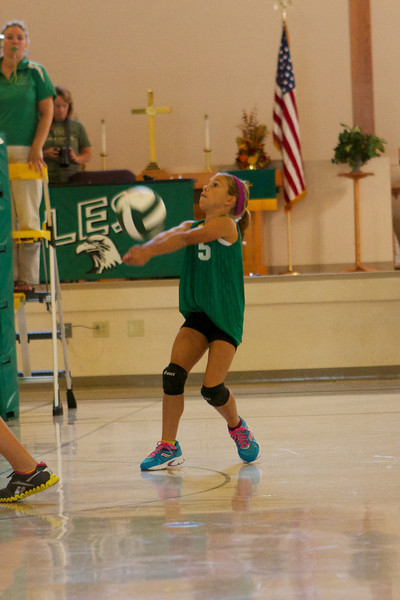 Bloomington Lutheran Athletics