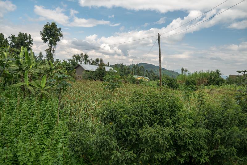 Ruhengeri-Rwanda-17.jpg