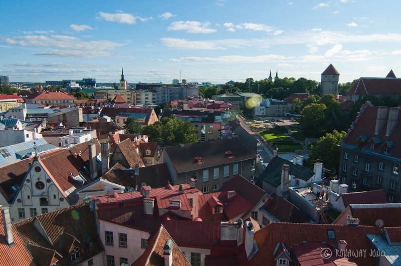 tallinn-estonia-view-1312.jpg