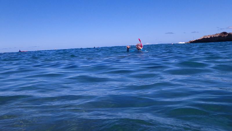 Hawaii-North Shore 2017-8030035.jpg