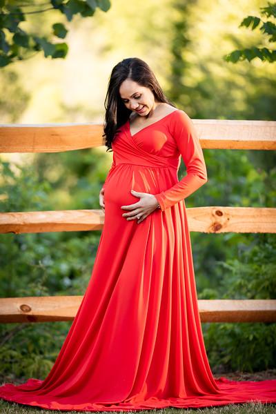 04.21.19 - Adriana Barbosa's Maternity - -72.jpg