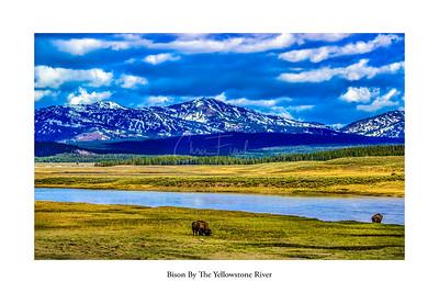 Yellowstone River, Wyoming