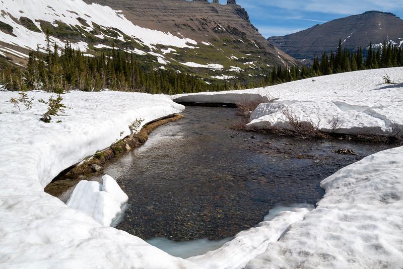 glacier92476-12-19.jpg