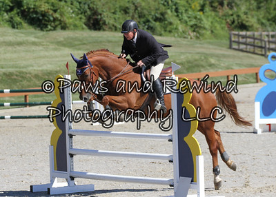 Grand Prix Ring:  Low and Medium Schooling Jumper (Thursday)