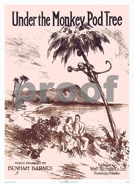 086: Under The Monkey Pod Tree - Vintage Hawaiian Music Cover, ca 1917 Words & Music: Benham Barnes Wall Nichols, Honolulu. (PROOF watermark does not appear on your print)