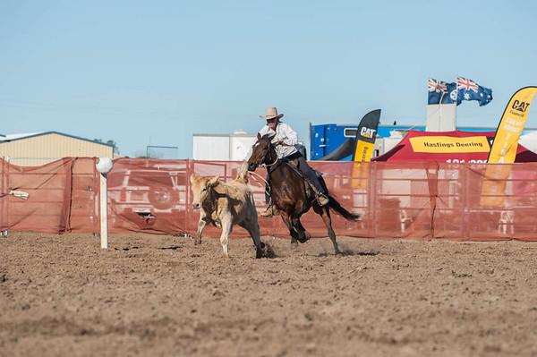 Winners  ASHOF Horse & Heritage Expo
