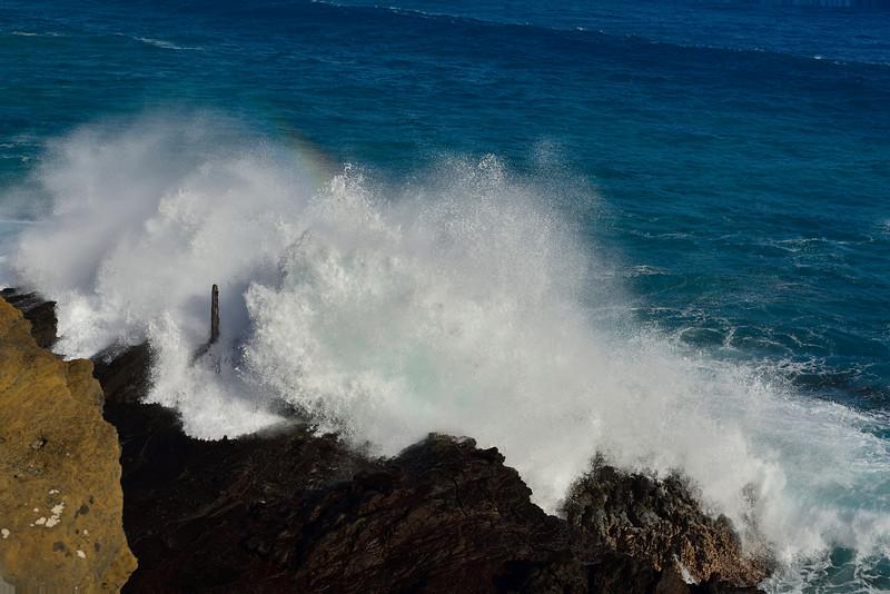 2017-Hawaii_162.jpg