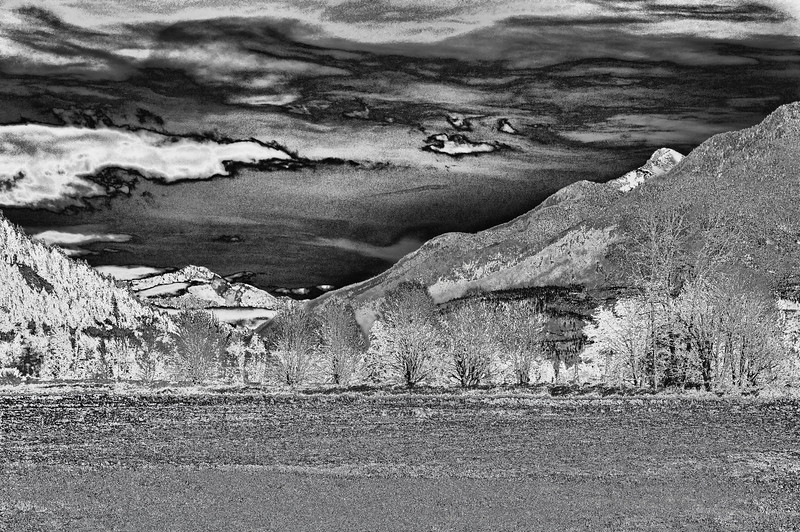 "04 Jun 13.  Back on the first of March I sent out an image taken near Rockport, WA which had a snow capped mountain in the background and lots of golden ground cover in the foreground; that's for reference. This is the same image but I've both converted it to B&W and inverted the colors. Now what I think I have is what an old printing glass would have looked like in the middle 19th century, a B&W negative if you will. The image you are seeing is VERY grainy, but the ""original"" from which I made this was too,although it was not as apparent in the colored version. I've not printed this, but if one were to so do I believe you would come out with a B&W version of what I originally shared. At first glance it is going to look like, WHOA, what happened, but study it for a few moments and I think you will see an amazing amount of detail, perhaps even a slight sense of a third dimension in the tree line. Nikon D300s; 18 - 200; Aperture Priority; ISO 200; 1/640 sec @ f / 8."