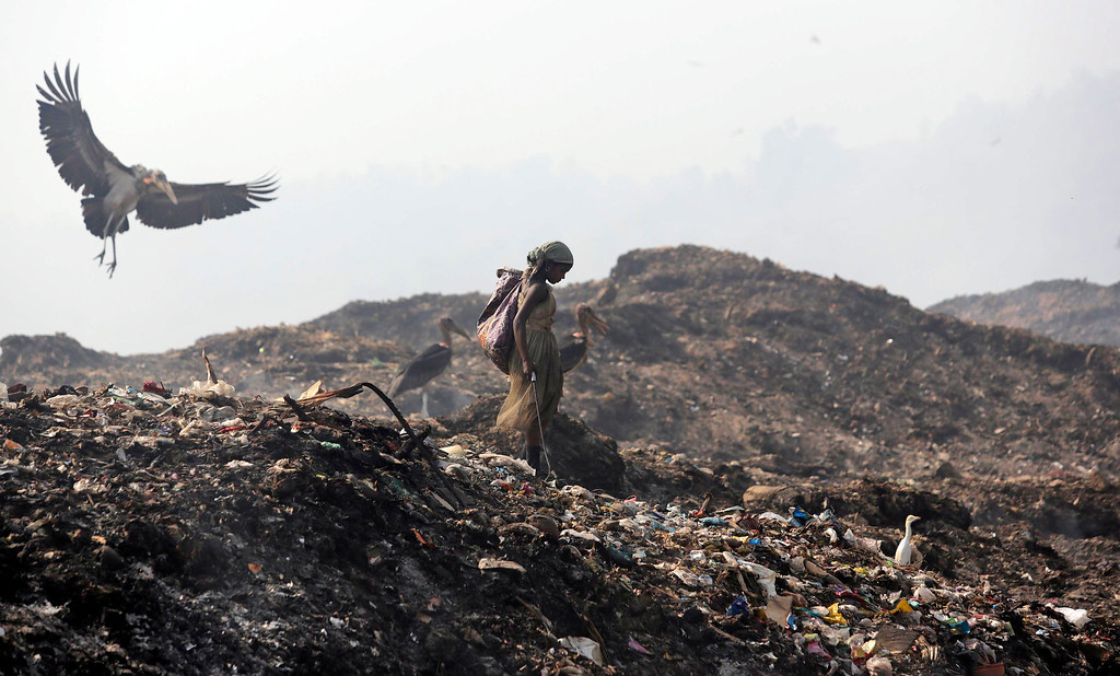 . A Greater Adjutant Stork flies by a ragpicker looking for recyclable items at a garbage dump on Earth Day, on the outskirts of Gauhati, India, Tuesday, April 22, 2014. People across the globe hold events to celebrate the Earth\'s environment and spread awareness on how to conserve its natural resources on Earth Day, observed annually on April 22. (AP Photo/Anupam Nath)