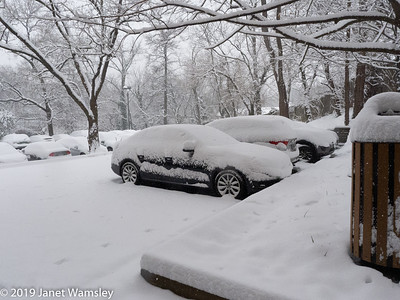 2019-01-13 snowstorm