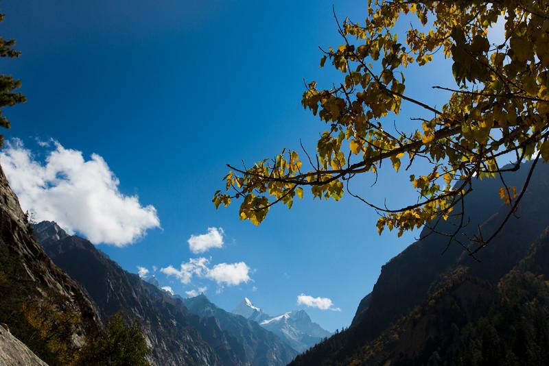 Himalayas 231.jpg