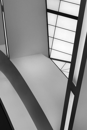 Lines, Shades, Light, Curves, and Contrasts