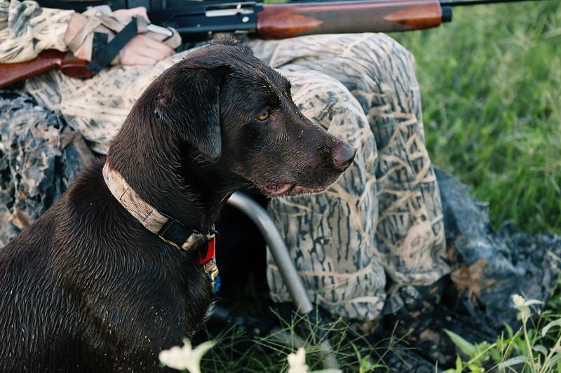 hunt (486 of 1030).jpg