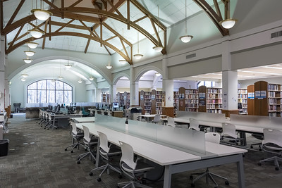 Bluebonnet Library