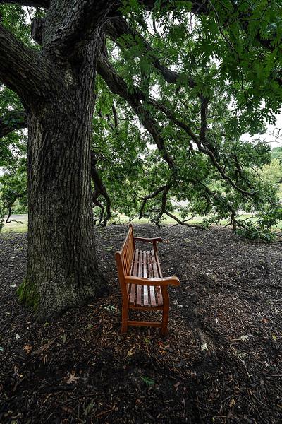 a 8 27 Arboretum-78.JPG