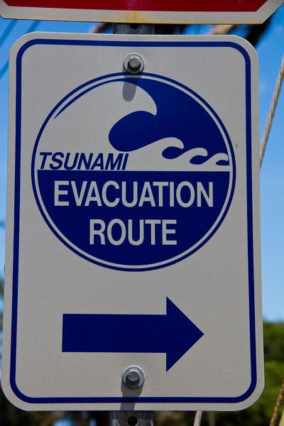 molokai valley tsunami.jpg