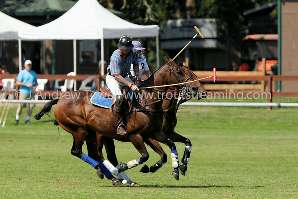 2014 Tacoma Polo Club Sasquatch and Morgan Stanley Cups