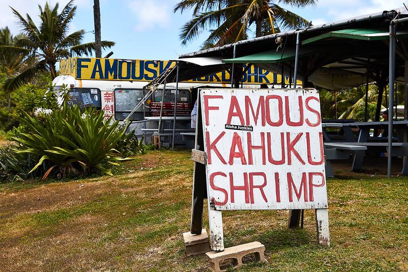 Hawaii-IMG_2233_.jpg