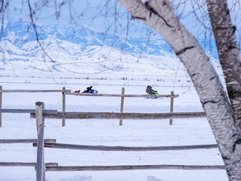 2019 Snow Day-210.jpg