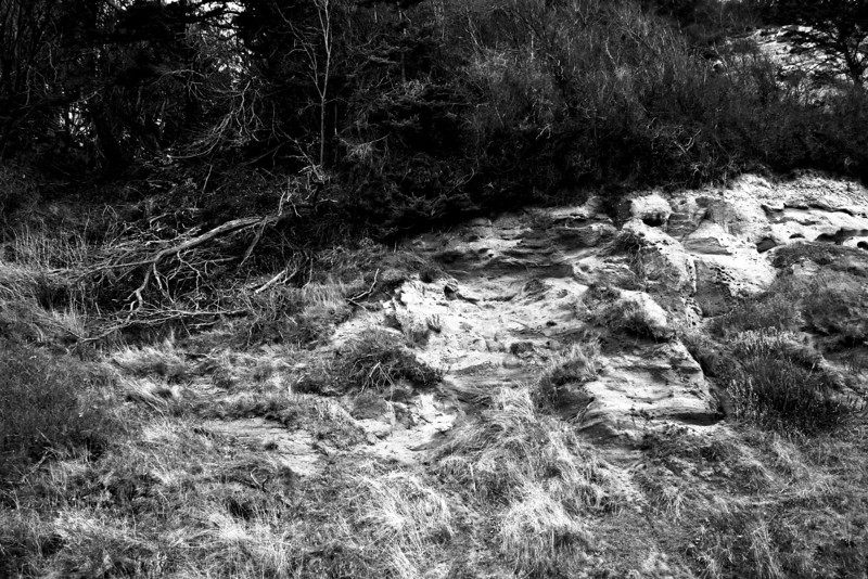 081206-001BW (Abstract; Bluff Base).jpg
