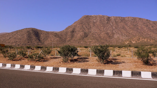 India - Rajasthan - Chittorgarh