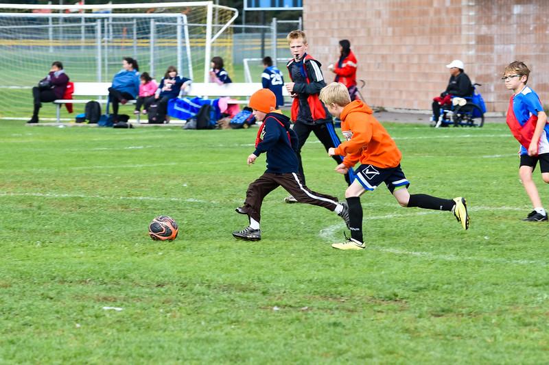 Westmount Soccer-134.jpg