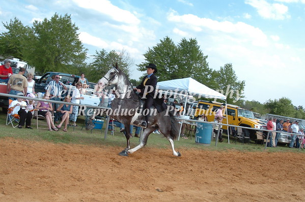 CLASS 7 WALKING 15.2 & UNDER AMATEUR SPECIALTY