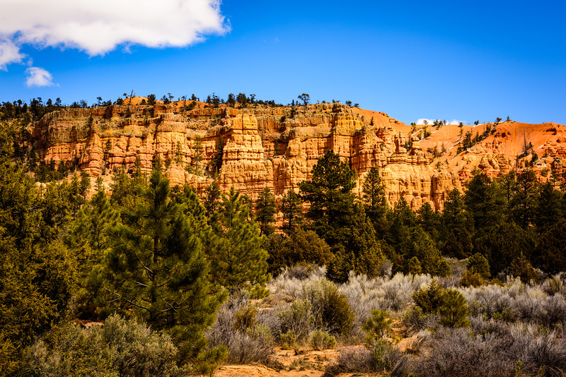 Dixie National Forest, Southern Utah