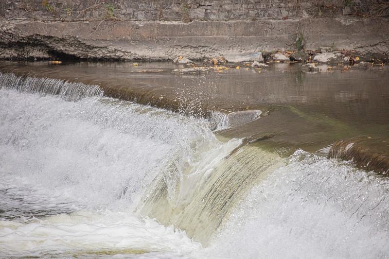 salmon upstream (22 of 48).jpg