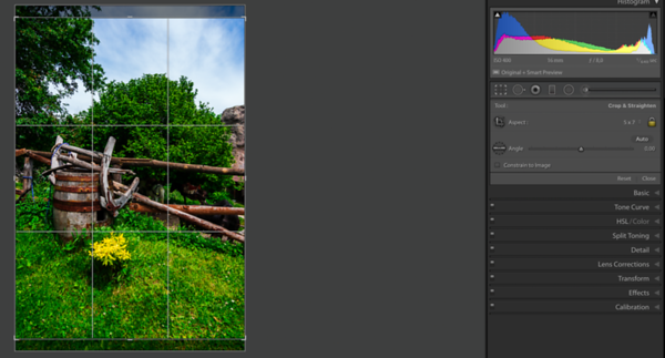 Photo with 5:4 Crop Overlay in portrait orientation